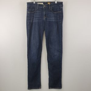 Pilcro and the letterpress anthro straight jeans